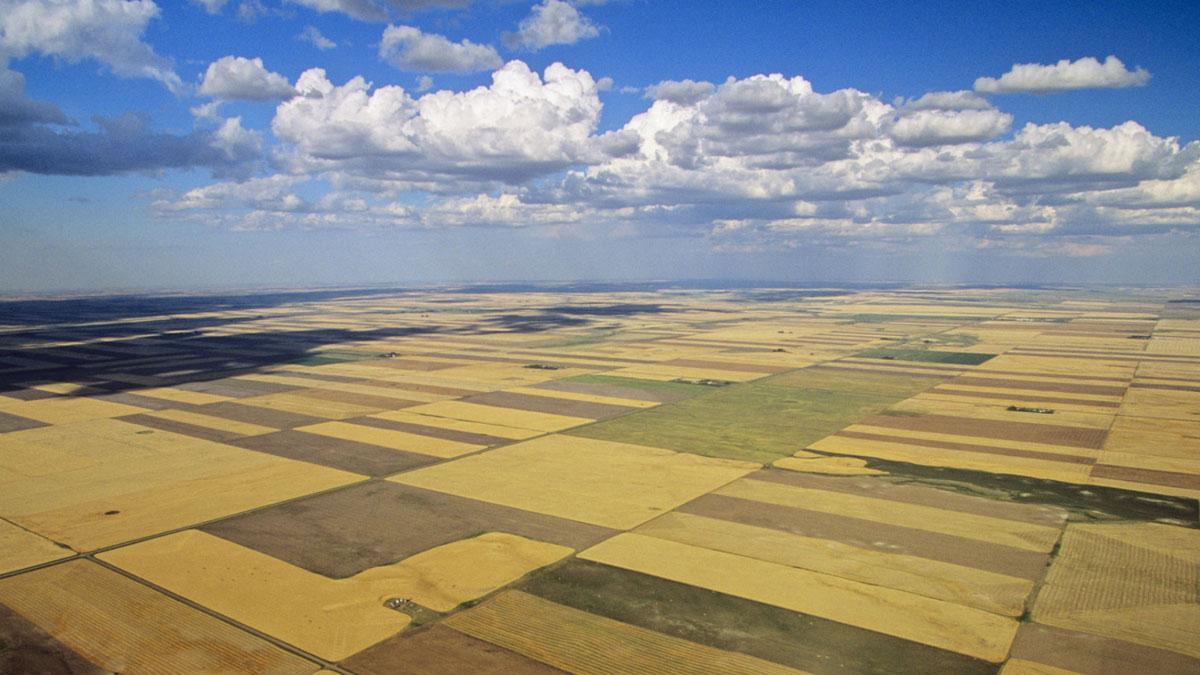 Saskatchewan PNP invites 269 immigrants in the latest provincial draw