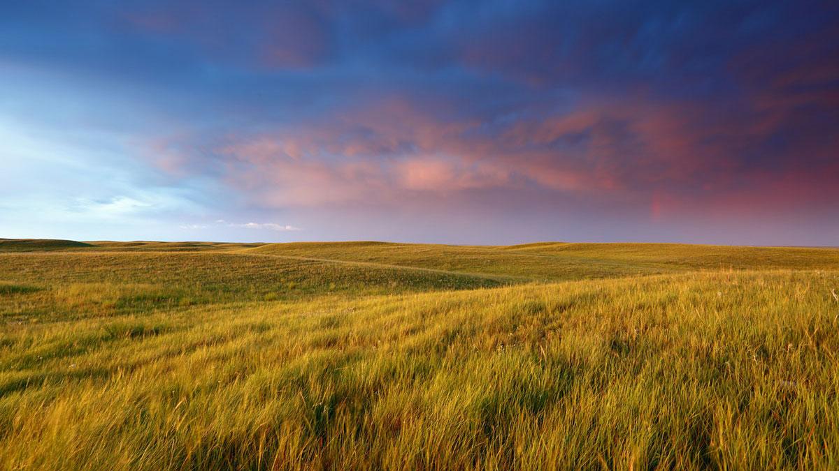 528 immigrants invited by Saskatchewan under its PNP program