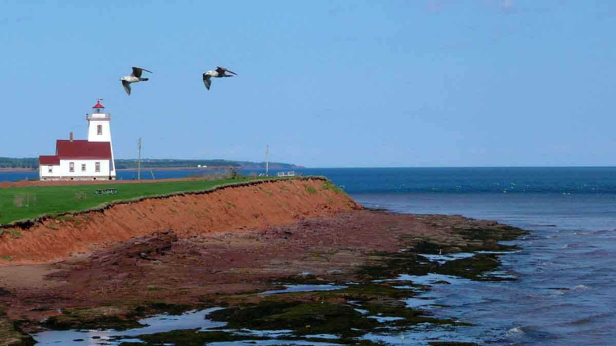 Rise in Job Opportunities in Prince Edward Island